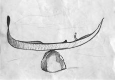 Meta Gondola Fisica, 2017, grafite su carta, cm 42 x 29,7.